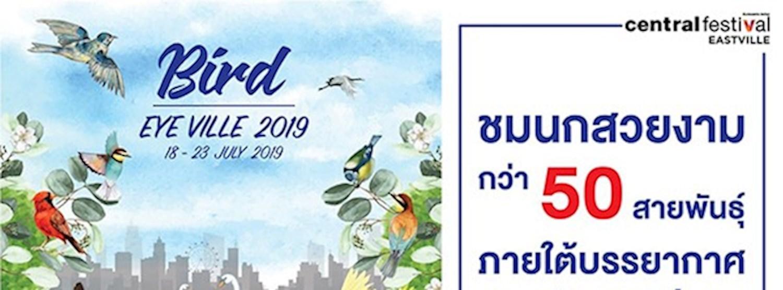 Bird Eye Ville 2019 Zipevent