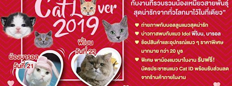 Cat Lover 2019 Zipevent